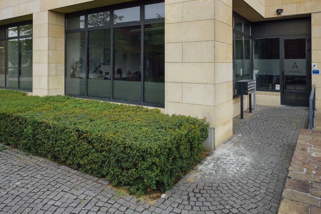 Wieni kantoor - voordeur